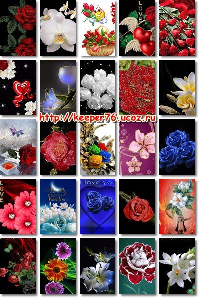 бесплатные картинки цветы на телефон: