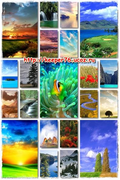 Картинки природы для сотового 320 240